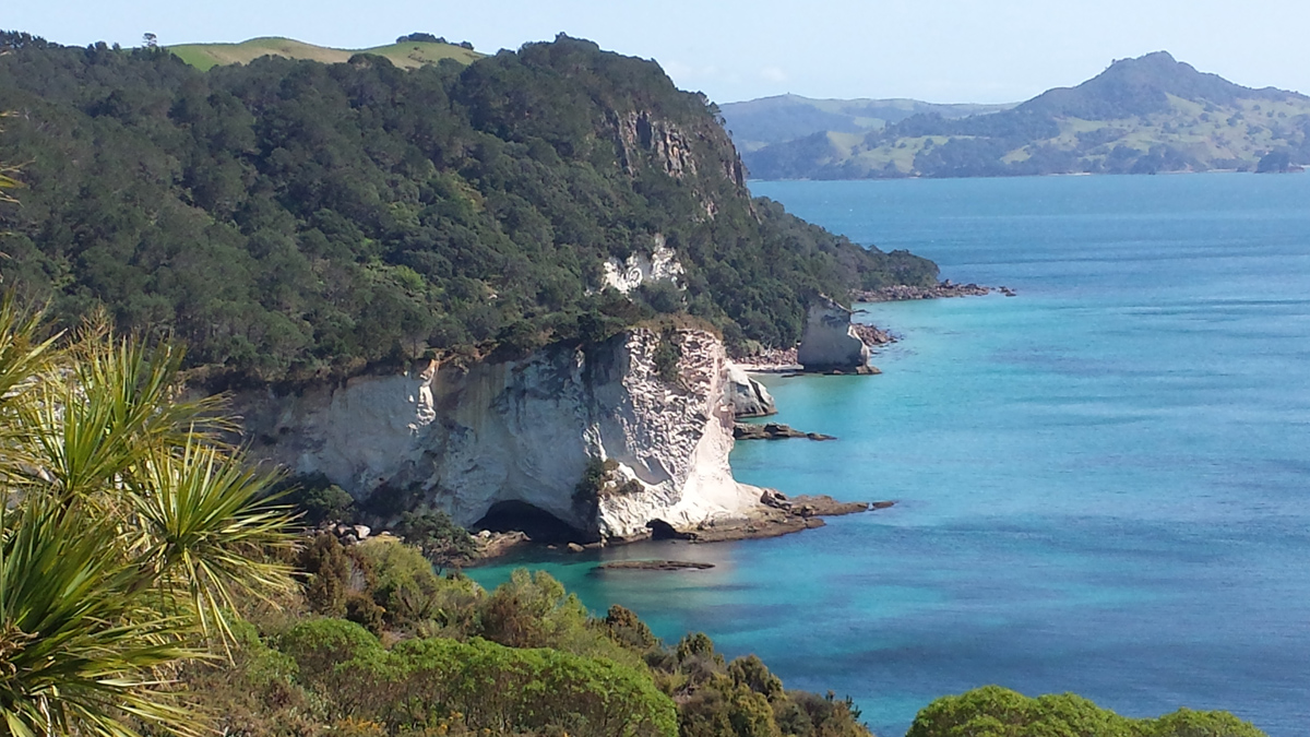cathedral cove coromandel new zealand