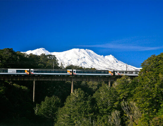 the northern explorer train new zealand