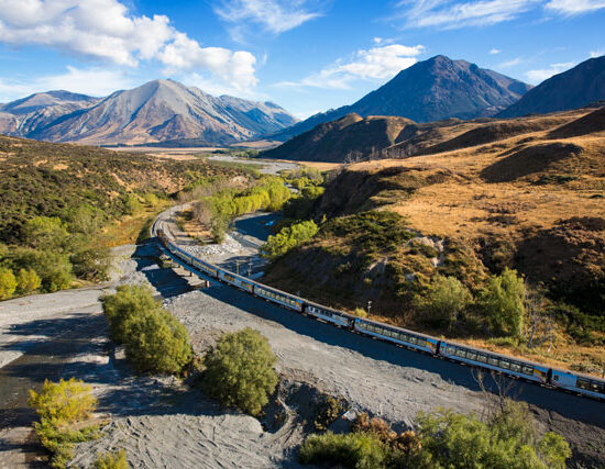 TranzAlpine Train new zealand