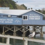 Mangonui Fish and Chips new zealand